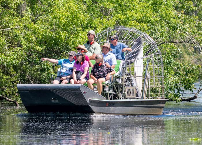 New Orleans Airboat Tours Swamp